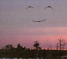 Smile. God loves you!