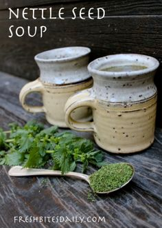 Nettle seed soup for a quick nutrition fix Fresh Bites Daily Real Food Recipes, Soup Recipes, Healthy Recipes, Weed Recipes, Herbal Remedies, Natural Remedies, Nettle Recipes, Slow Cooker, Wild Edibles