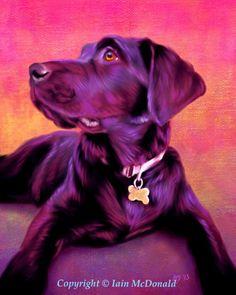 Chocolate Labrador Portrait, Chocolate Lab Art, Chocolate Labrador Painting example