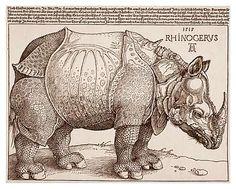 Albrecht Durer's rhinoceros woodcut print from 1515. Amazing.