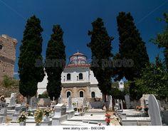 samos greece flowers pythagorion - Google Search