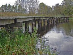 the Netherlands - Apeldoorn, Beekbergerwoud