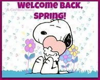 Welcome back spring