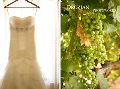 Ashley and Gary's Wedding at Charles Krug Winery in St. Helena, CA
