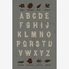 "Cute alphabet poster with ""wood"" letters and leaf identification"