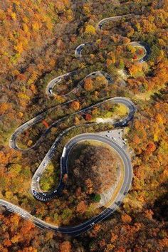 I WANT TO RIDE THIS ROAD:  Iroha-Zaka (Mountain Iroha) is a winding road located in Japan with 48 curves, each representing one of the 48 letters of the ancient Japanese alphabet, this road is an important place in Japanese history, as Buddhist monks crossed this path to go on pilgrimage to Lake Chuzenji.