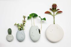 Dutch studio Harm en Elke created sweet ceramic plant pot pockets for the wall called 'Wall flowers'.