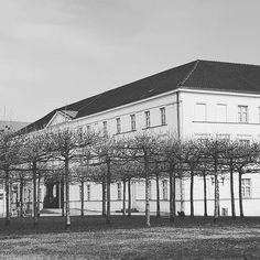 Wir sind heute im wunderschönen Pommerschen Landesmuseum in #Greifswald. Noch bis 15 Uhr. #EIZRostock #engagiert #mv #silversurfer