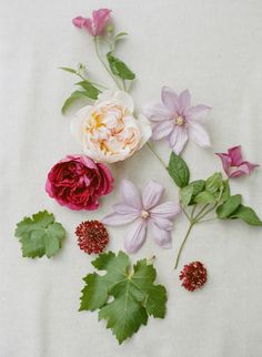 The prettiest spring florals: http://www.stylemepretty.com/2015/08/25/romantic-berry-pink-sonoma-wedding/ | Photography: Josh Gruetzmacher - http://www.joshgruetzmacher.com/