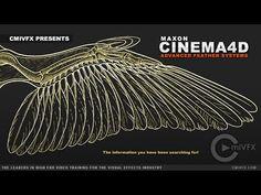 Cinema 4D Advanced Feathers - Computer Graphics & Digital Art Community for Artist: Job, Tutorial, Art, Concept Art, Portfolio