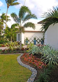 Award winning Pamela Crawford & Associates is a landscape design company in Boca Raton offering custom pool & yard landscaping installs & construction. Florida Landscaping, Tropical Landscaping, Front Yard Landscaping, Backyard Landscaping, Landscaping Ideas, Florida Gardening, Palm Trees Landscaping, Inexpensive Landscaping, Modern Backyard