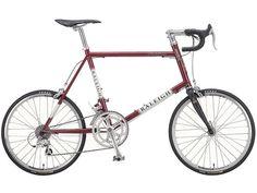 RSC RSW Carlton・ラレー スモール カールトン/スモール ホイール : ラレー・RALEIGH : ミニベロ・小径自転車研究所 通販ショップの最安値、価格比較