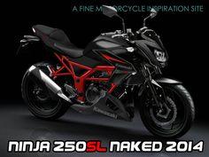 kawasaki-ninja-250sl-naked bike