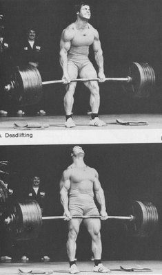 Rest in Peace, Franco Columbu! Muscle Fitness, Muscle Men, Fitness Goals, Mens Fitness, Workout Fitness, Training Motivation, Fitness Motivation, Powerlifting Motivation, Weight Training