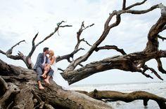 jekyll island weddings driftwood beach | Jekyll Island Beach Wedding and Reception Packages