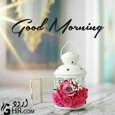 Good Morning Images Hd, Good Morning Picture, Good Morning Messages, Good Morning Greetings, Morning Pictures, Good Morning Quotes, Morning Wishes For Lover, Happy Morning, Morning Coffee