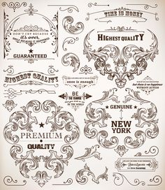 Ornamental elements and labels vintage style vector 01