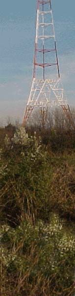 The Navy's Greenbury Point Conservation Area.  Great stroller-friendly hiking, spectacular vistas and walk right under the radio towers!