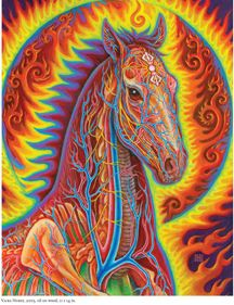 "Taken from ""Net of Being"" new Alex Grey book coming NOVEMBER 2012"