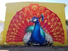 Buck Rdgz in Tehuacán, Mexico, 2017