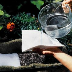 Hydromats for inside your pots, helps to eliminate over and under watering