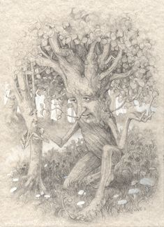 Rootfoot Tends to a Sapling by yaamas on DeviantArt