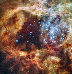 """Star Cluster R136 Bursts Out -- """"In the center of star-forming region 30 Doradus lies a huge cluster of the largest, hottest, most massive stars known... Gas and dust clouds... have been sculpted into elongated shapes by powerful winds and ultraviolet radiation from these hot cluster stars."""""""