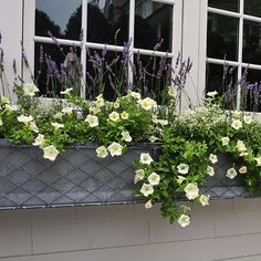 Window boxes can also be fixed to walls, indoors as well as out. Get creative in conservatories, bathrooms, kitchens and wherever house plants will be at home. Make sure the holders are sturdy enough for troughs and pots> http://www.garden-requisites.co.uk/products/window-boxes/