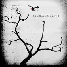 The Airborne Toxic Event - they always tell a story with their lyrics and he has this nice baratone voice to help resonate the words.