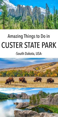 Amazing things to do in Custer State Park in the Black Hills in South Dakota. Includes suggested 1 day itinerary, practical tips, lodging, and places to see nearby. Find out! Florida Springs, Florida Keys, Destin Florida, Florida Beaches, Florida Travel, South Dakota Vacation, South Dakota Travel, North Dakota, Custer South Dakota