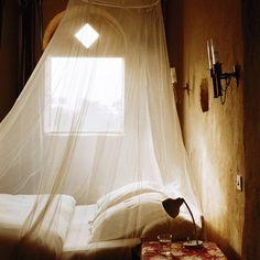 light, netting