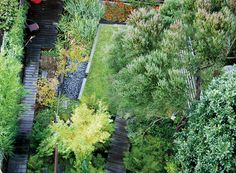 A landscape architect in San Francisco harnesses an underground water source to create a lush marshland in his own backyard.