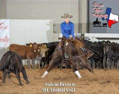 Rumorhasit 2009 Gelding NCHA LTE: $29K ready to go haul at #ncha weekend shows #worldfinals #cuttinghorsesforsale #cuttinghorses tap link in our profile to see more. Cutting Horses, Reining Horses, Final S, Ready To Go, Profile, Link, Animals, User Profile, Animales