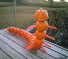 Cute and Funny Pictures and more: Scary Creepy Evil Pumpkin Centipede Halloween Decoration Diy Halloween, Humour Halloween, Holidays Halloween, Halloween Pumpkins, Happy Halloween, Halloween Decorations, Peanuts Halloween, Funny Pumpkins, Spooky Decor