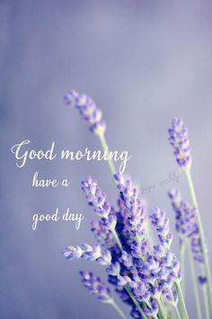 Good Day Gif, Good Morning Flowers Gif, Good Morning Nature, Free Good Morning Images, Good Morning Gif, Good Morning Greetings, Morning Pictures, Good Morning Quotes, Morning Pics