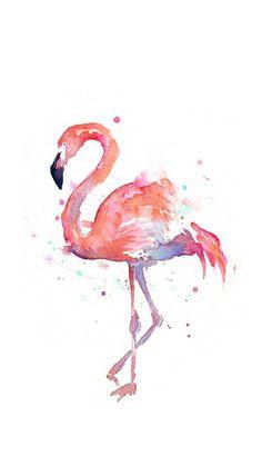 Фламинго.  Обои.