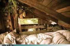 Tree Home Interior Design