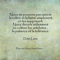 Dalaï Lama - 52 Citations - La vache rose Positive Attitude, Positive Thoughts, Positive Quotes, Positive Vibes, Strong Quotes, Attitude Quotes, Dalai Lama, Favorite Quotes, Best Quotes