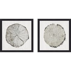 'Woodland Years I' 2 Piece Framed Print Set on Glass ($37) ❤ liked on Polyvore featuring home, home decor, wall art, 2 piece wall art, glass wall art, twin pack, glass home decor and two piece wall art