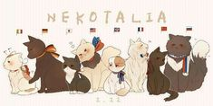 I totally think Iggycat is jealous on Japancat, and Neko!Gerita is too cute for me. Russia cat is so fluffy! Hetalia Anime, Hetalia Funny, Neko, Otp, Hetalia Axis Powers, Usuk, Kawaii, Wattpad, Manga Games