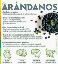 Verde y Natural: Beneficios de los arándanos