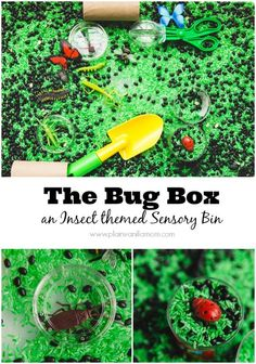 Build a Bug Box Sensory Bin. A fun way to learn about Insects for toddlers and preschoolers.