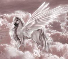 belles images de licorne | chevaux et licornes