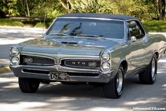 67 GTO - Pure Muscle!