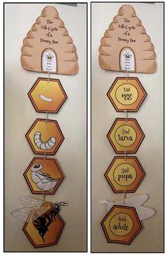 Hexagon shaped activities beekeeping bee crafts honey bee crafts honeybee activities beehive craft life cycle of a bee activities bee crowns crown crafts for kids Bees For Kids, Bee Crafts For Kids, Kids Diy, Bee Activities, Science Activities For Kids, Experiments Kids, Sequencing Activities, Science Jokes, Preschool Science