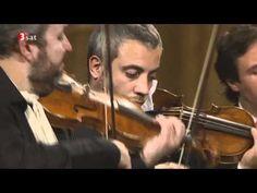 Il Giardino Armonico - Vivaldi - Concerto for strings in G minor RV 152 G Minor, Classical Music, Authors, Plays, Rv, Music Instruments, Books, Movies, Musicians