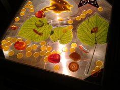 Experimentació de tardor a la taula de llum amb el projector.Experimentation Autumn Lightbox with projector.