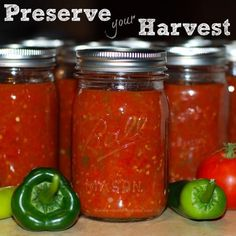 DIY Salsa Canning for Beginners: Use Up Ripe Tomatoes - Canning Homemade Salsa, Salsa Canning Recipes, Easy Canning, Canning Salsa, Canning Tips, Canning Tomatoes, Garden Tomatoes, Canning Squash, Canning Vegetables