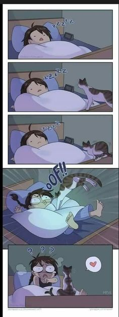 Cat Attack by Zombiesmile on DeviantArt on We Heart It I Love Cats, Crazy Cats, Cute Cats, Cat Comics, Funny Comics, Life Comics, Cat Memes, Funny Memes, Memes Humor