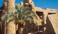 Seiling cruise   REISEbazaar Mount Rushmore, Cruise, Europe, Mountains, Nature, Travel, Naturaleza, Viajes, Cruises